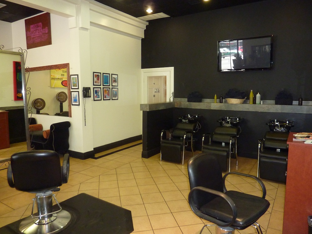 Gallery platinum salon international encino ca for Salon international